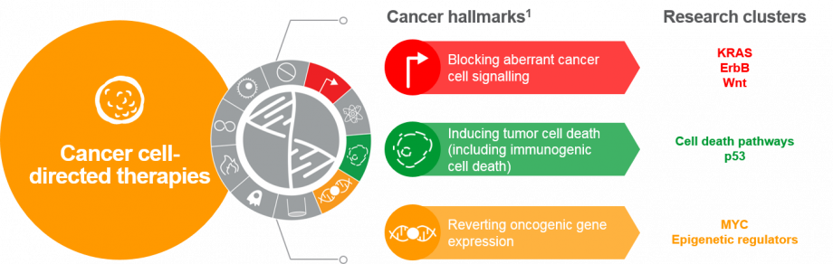 Key cancer hallmarks and driver pathways