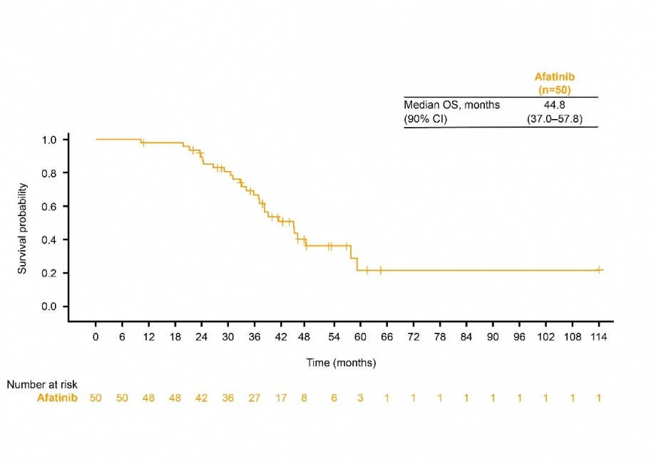 Overall survival for Asian patients in the GioTag study