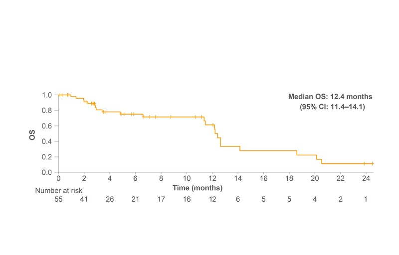 OS from the start of third-line nintedanib plus docetaxel after failure of ICI therapy (n=55)