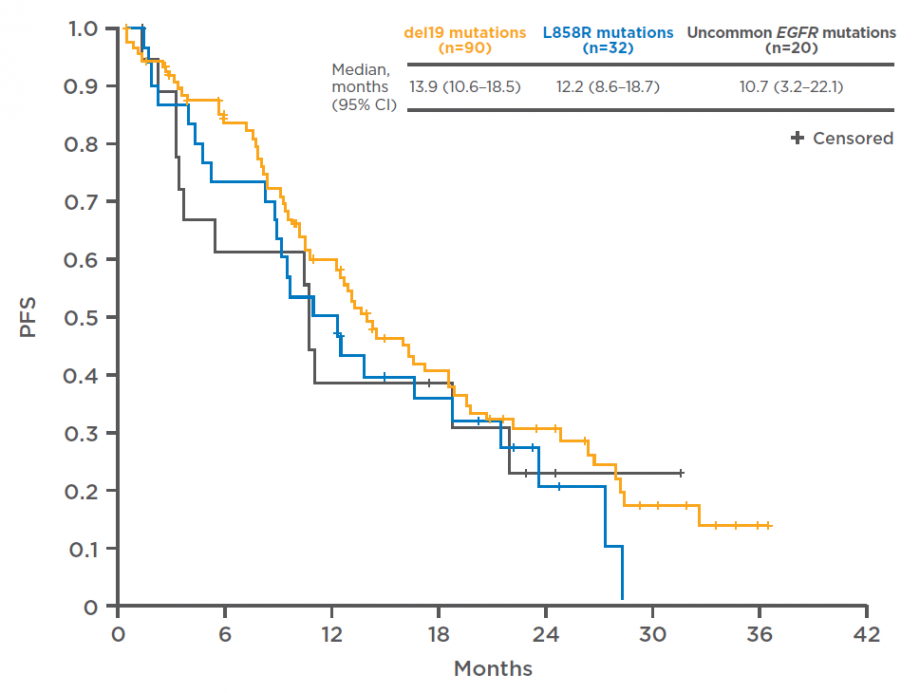 PFS in relation to EGFR mutation type in the GIDEON study