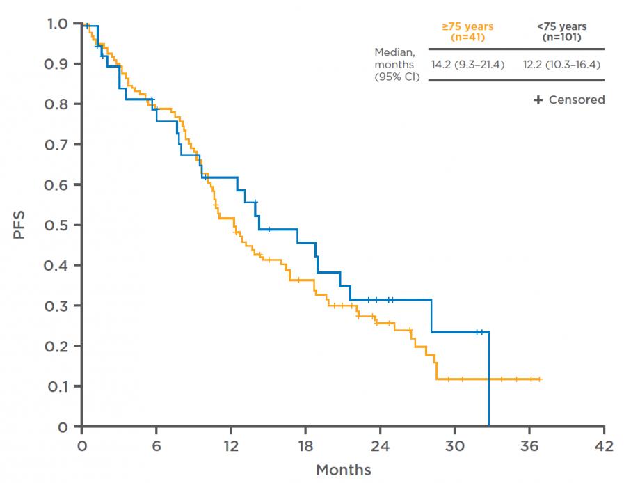 PFS in elderly patients in the GIDEON study