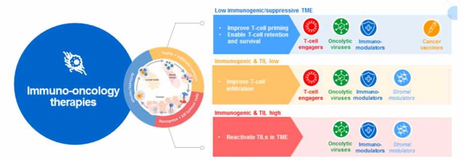 Making cancers more visible to the immune system with T-cell priming and immune modulation