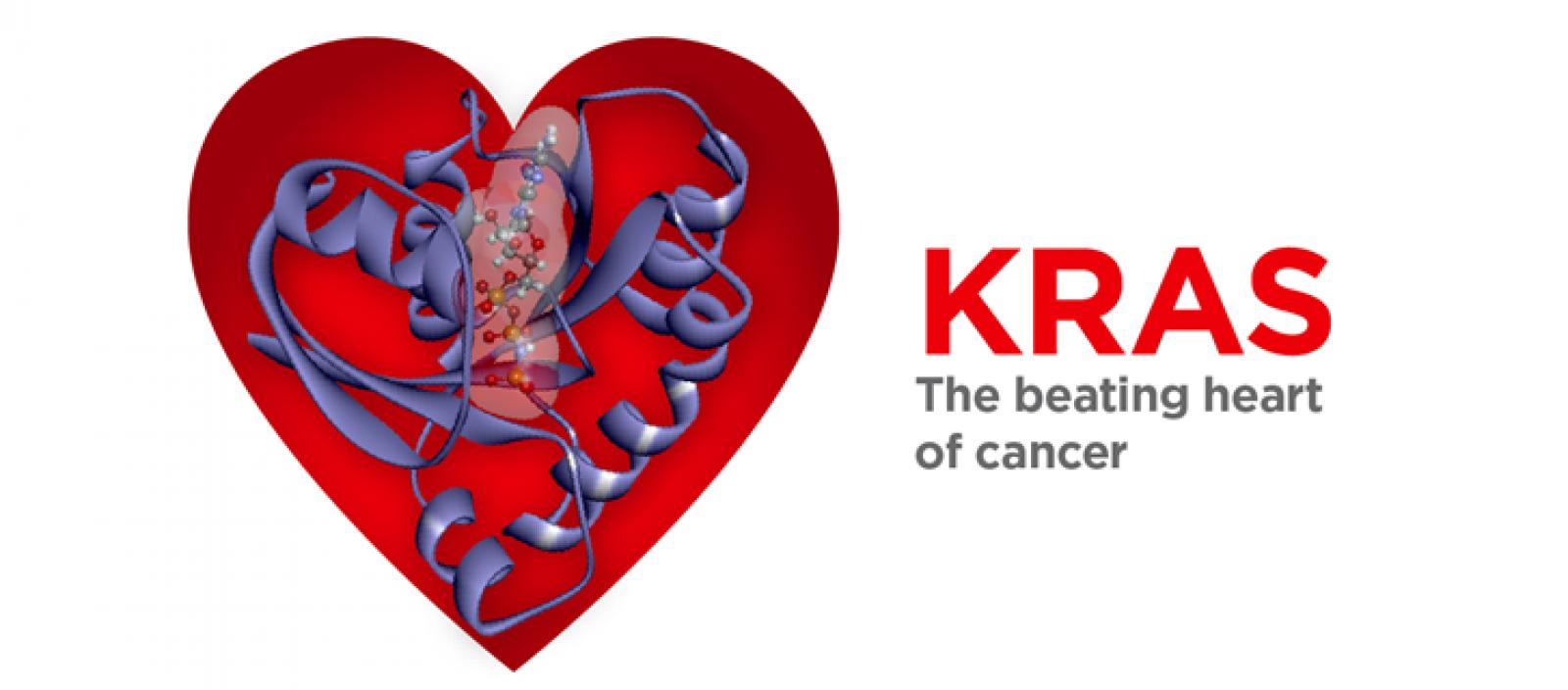 Targeting KRAS in cancer