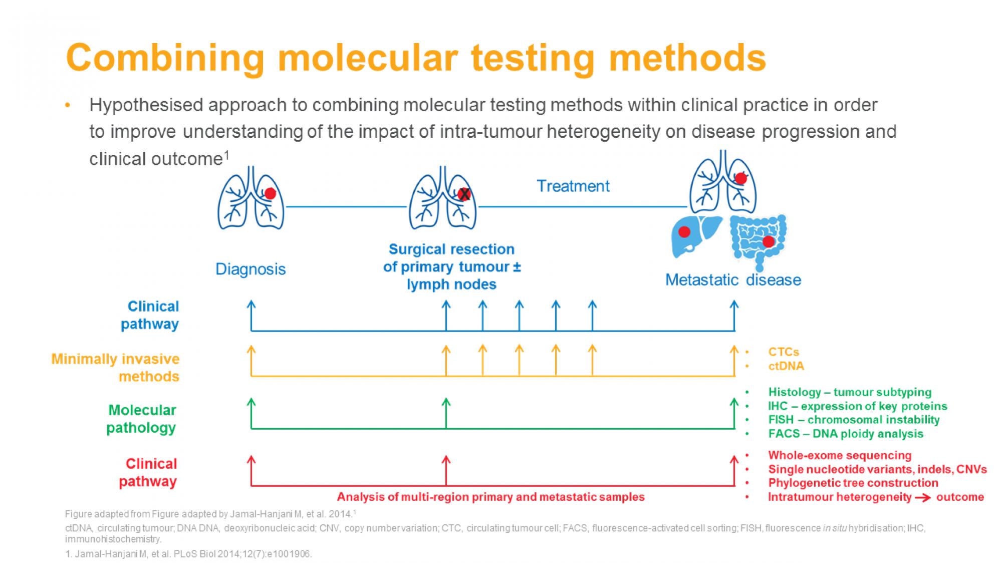 molecular_testing_nsclc_slide16