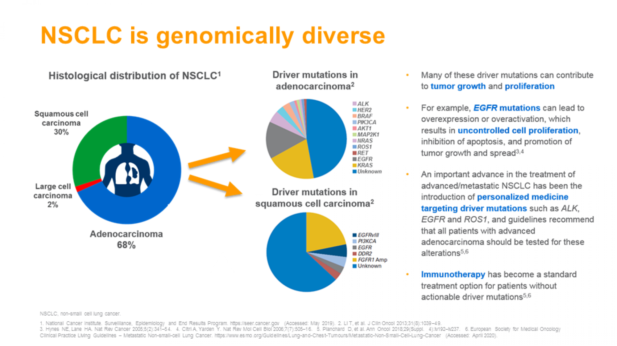 NSCLC ch1 slide 11