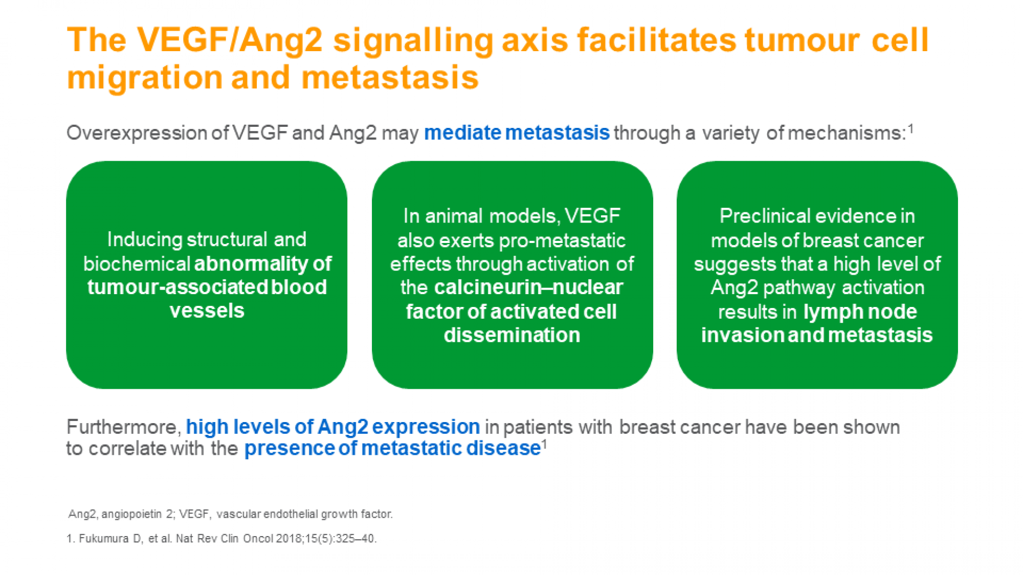 Disrupting angiogenesis