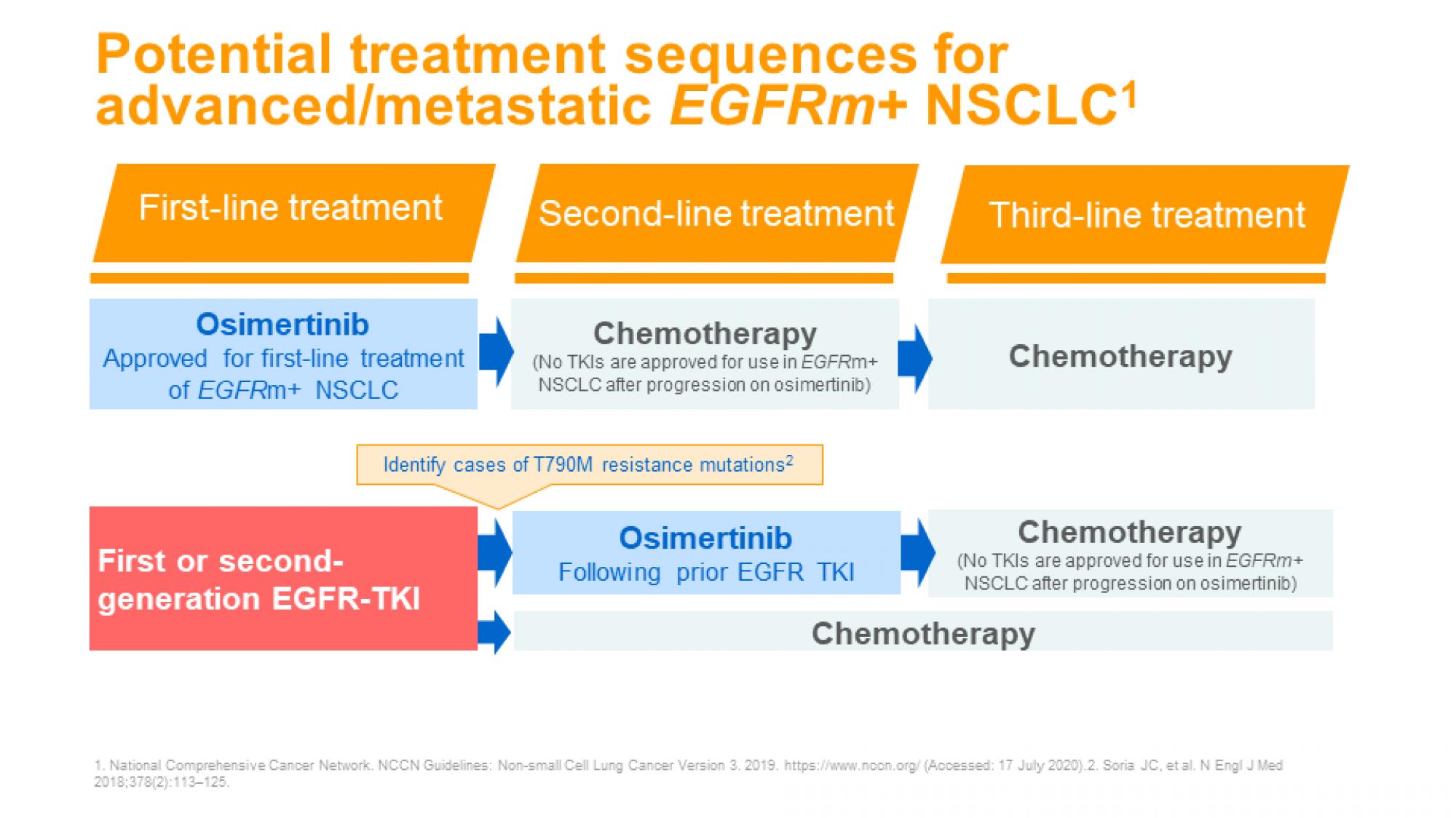 NSCLC ch3 slide 22