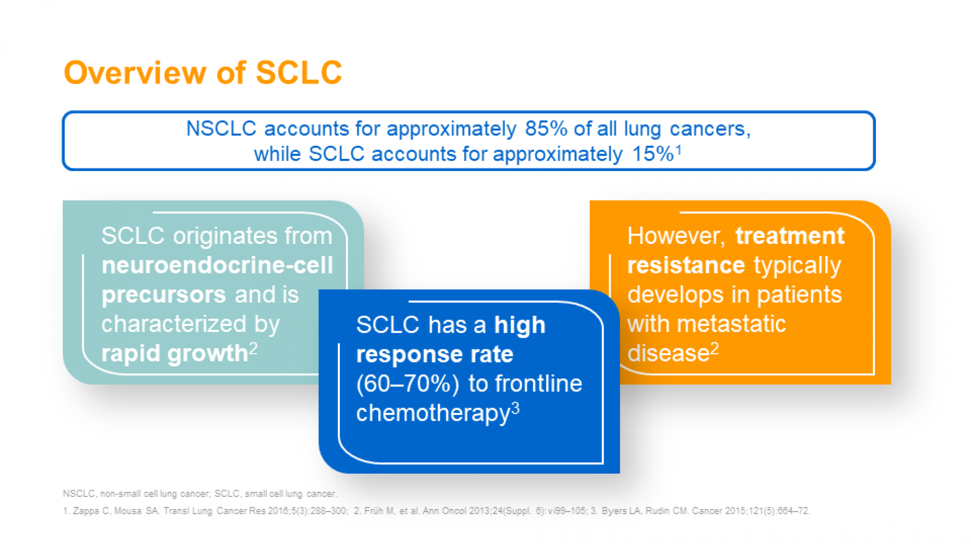 SCLC slide 3