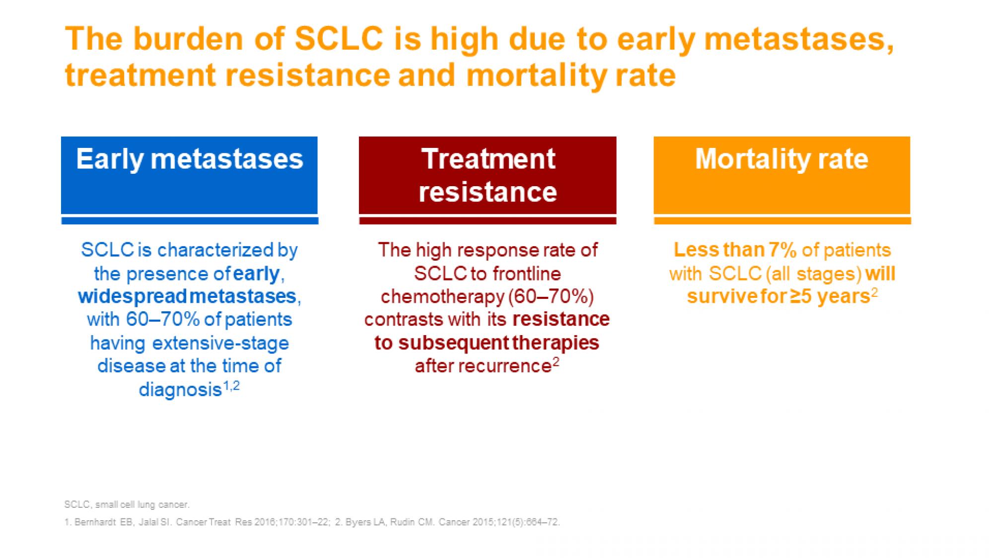 SCLC slide 4