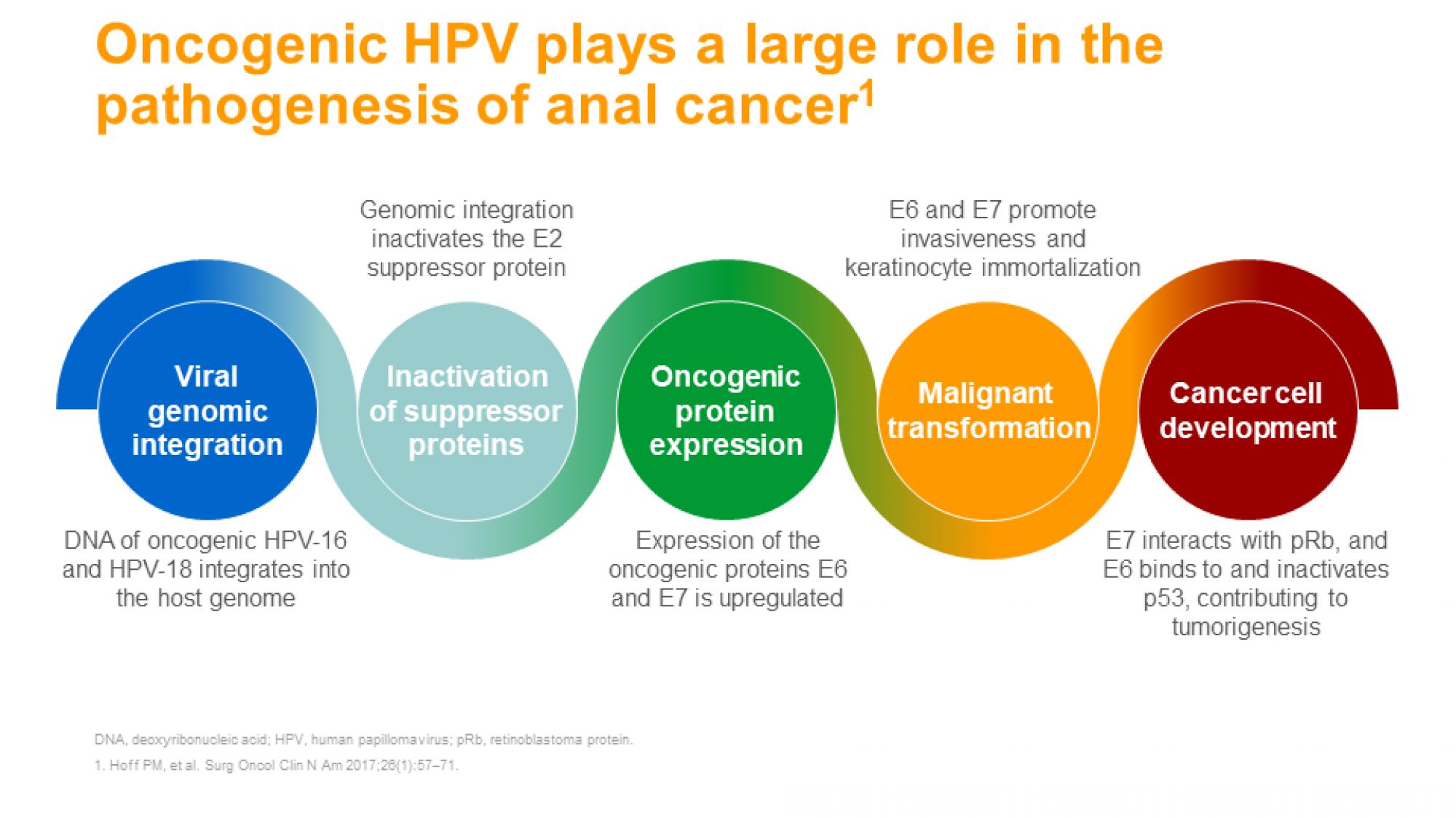Anal cancer 5